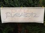 Fleadh Fiesta banner